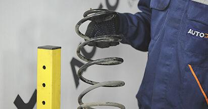 3 (BK) 1.4 2007 1.6 DI Turbo Federn - Handbuch zum Wechsel und der Reparatur eigenständig