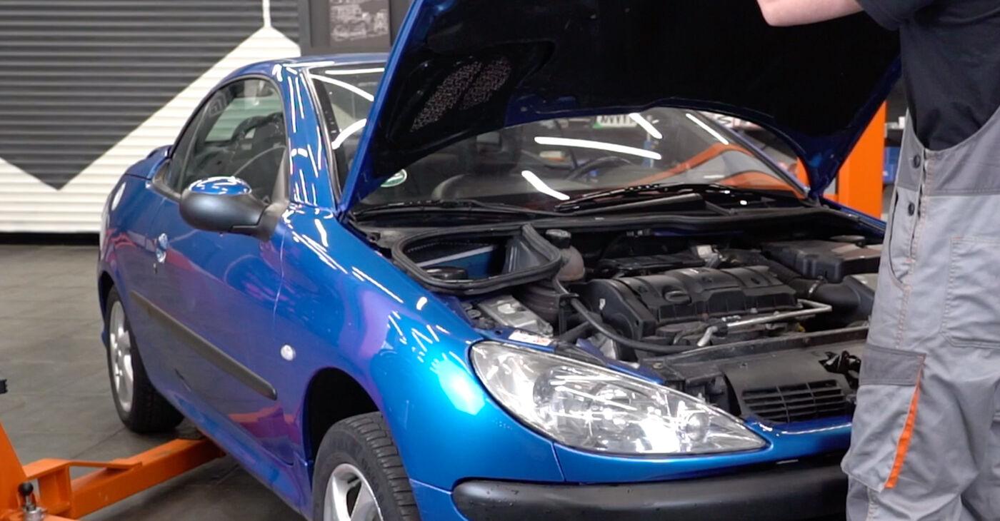 Kā nomainīt Bremžu diski Peugeot 206 cc 2d 2000 - bezmaksas PDF un video rokasgrāmatas