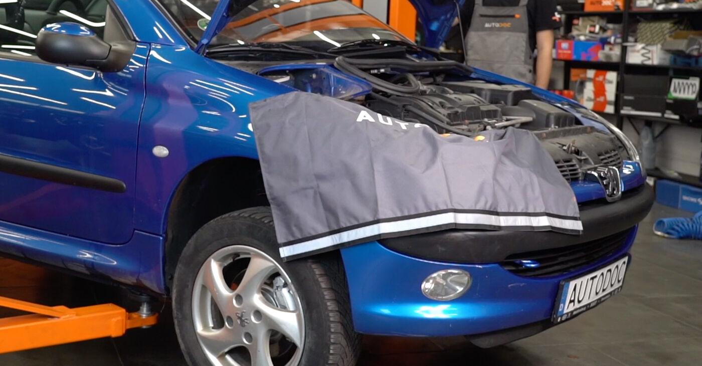 Peugeot 206 cc 2d 2.0 S16 2002 Koncnik zamenjava: brezplačni priročnik delavnice