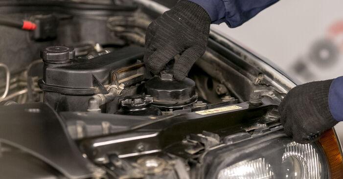 Patstāvīga BMW E53 2002 3.0 d Eļļas filtrs nomaiņa