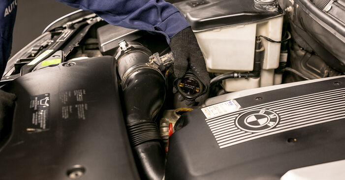 Patstāvīga BMW X5 (E53) 4.6 is 2003 Eļļas filtrs nomaiņa