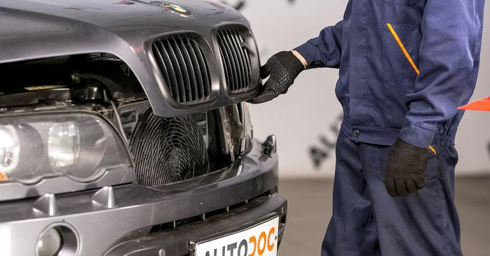 BMW X5 4.6 is Eļļas filtrs nomaiņa: tiešsaistes ceļveži un video pamācības