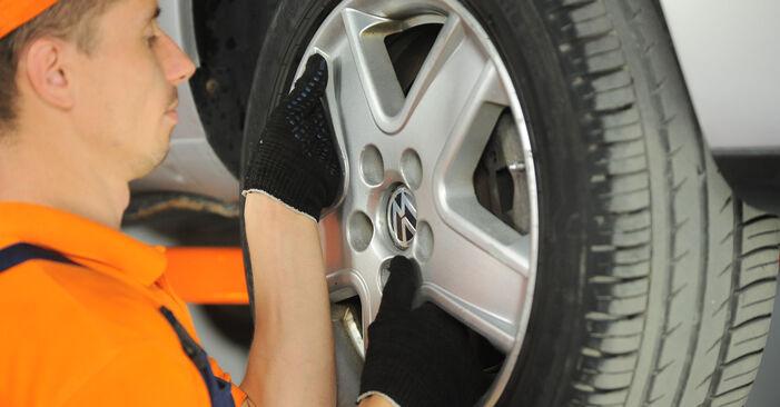 Wechseln Querlenker am VW SHARAN (7M8, 7M9, 7M6) 1.9 TDI 4motion 1998 selber