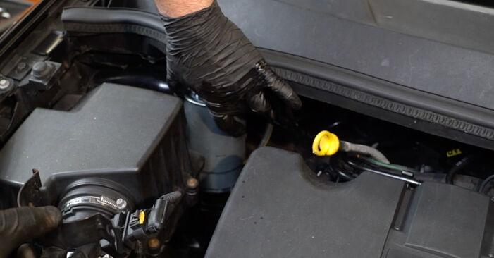 Schritt-für-Schritt-Anleitung zum selbstständigen Wechsel von Opel Corsa D 2010 1.3 CDTI (L08, L68) Kraftstofffilter