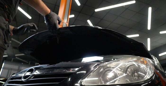 Hvordan man udskifter Gløderør på OPEL Corsa D Hatchback (S07) 2011: hent PDF manualer og video instruktioner