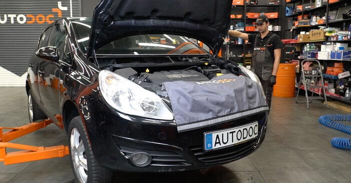Opel Corsa D 1.2 (L08, L68) 2008 Keilrippenriemen austauschen: Unentgeltliche Reparatur-Tutorials