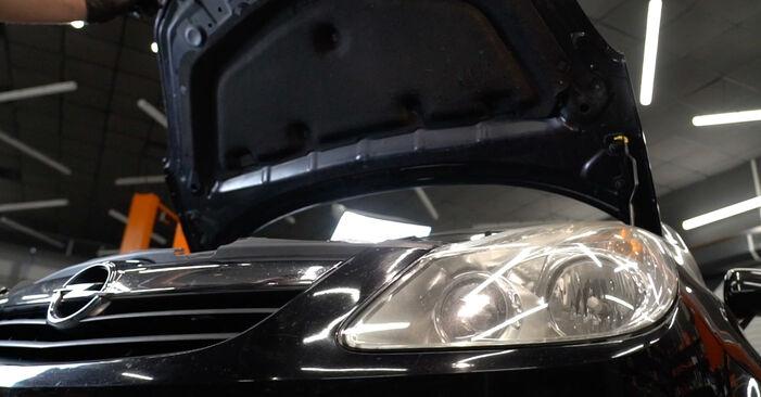Udskiftning af Forlygter på OPEL Corsa D Hatchback (S07) 1.0 (L08, L68) 2009 ved gør-det-selv