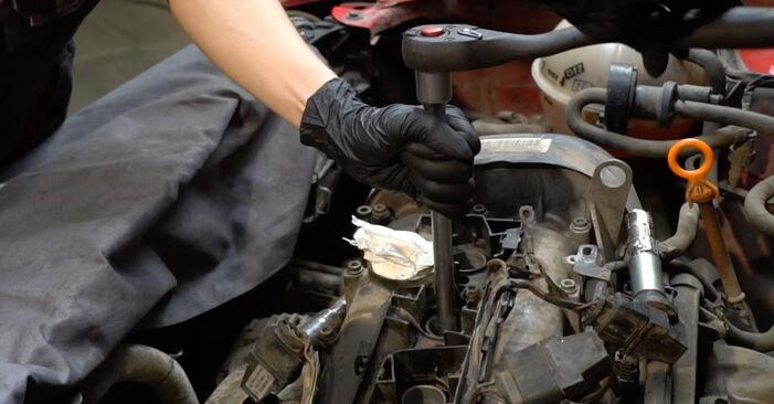 Priporočila korakov za DIY zamenjavo Seat Ibiza 6l1 2007 1.4 TDI Vzigalna svecka