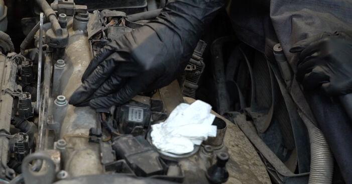 Kako težko to naredite sami: Vzigalna svecka zamenjava na Seat Ibiza 6l1 1.9 TDI 2008 - prenesite slikovni vodnik