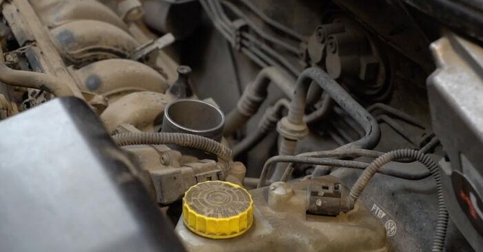 Zamenjajte Vzigalna svecka na Seat Ibiza 6l1 2004 1.9 TDI sami