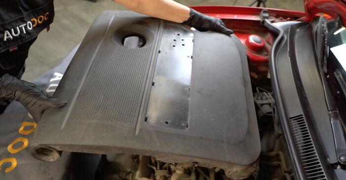 Zamenjajte Vzigalna svecka na SEAT Ibiza III Hatchback (6L) 1.9 SDI 2005 sami