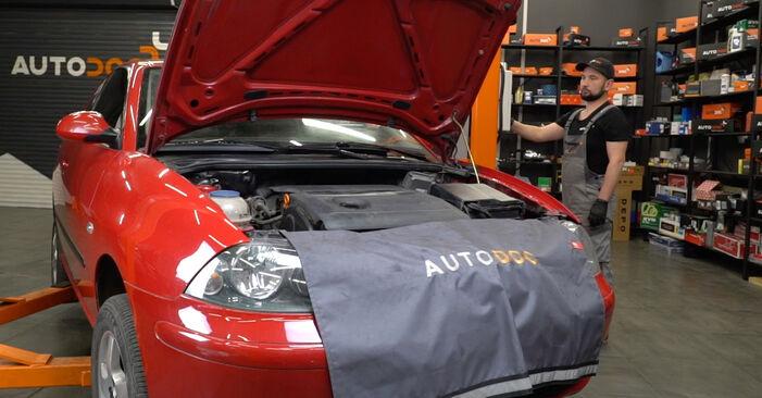 Spurstangenkopf Seat Ibiza 6l1 1.2 2004 wechseln: Kostenlose Reparaturhandbücher
