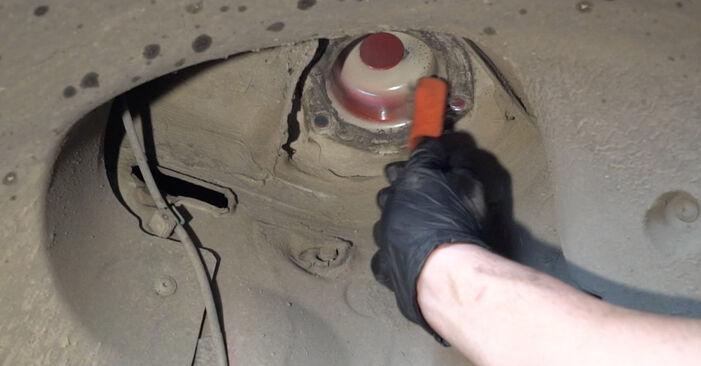 Schritt-für-Schritt-Anleitung zum selbstständigen Wechsel von Seat Ibiza 6l1 2007 1.4 TDI Federn