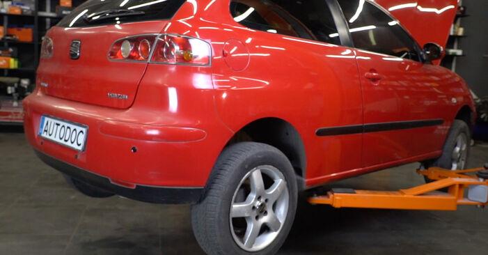 Seat Ibiza 6l1 1.4 16V 2004 Spyruoklės keitimas: nemokamos remonto instrukcijos