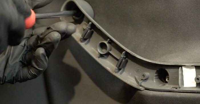 Zamenjajte Kljucavnice zunaj na SEAT Ibiza III Hatchback (6L) 1.9 SDI 2005 sami