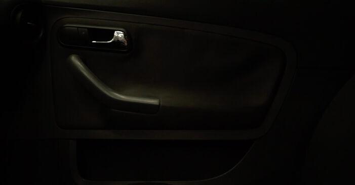 Naredite sami zamenjavo SEAT Ibiza III Hatchback (6L) 1.2 2008 Kolesni lezaj - spletni vodič