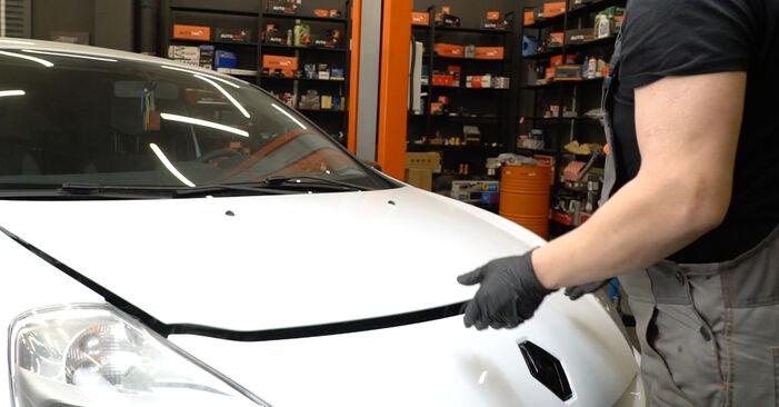 Hoe Luchtfilter RENAULT Clio III Hatchback (BR0/1, CR0/1) 2007 vervangen - advies en uitleg