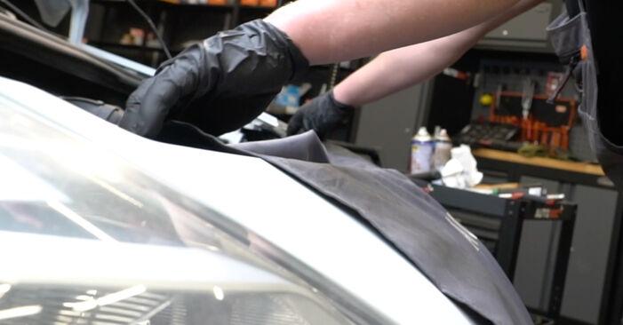 How to change Poly V-Belt on RENAULT Clio III Hatchback (BR0/1, CR0/1) 2007 - tips and tricks