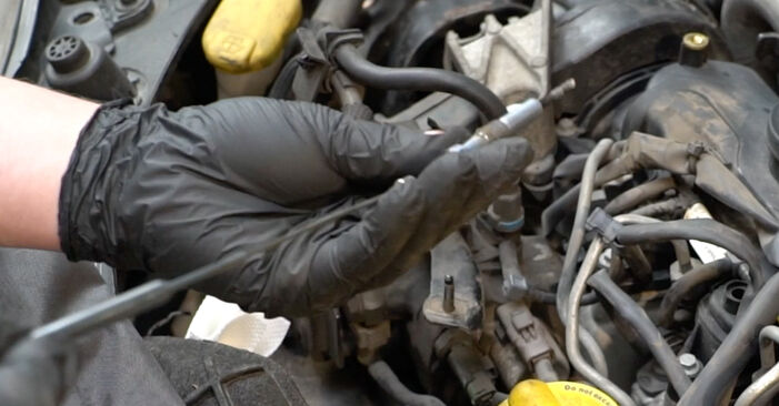 How to change Glow Plugs on RENAULT Clio III Hatchback (BR0/1, CR0/1) 2007 - tips and tricks