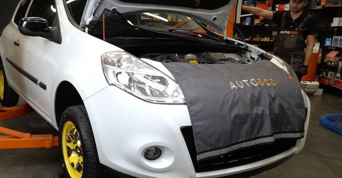 Renault Clio 3 1.2 16V 2007 Pasukimo trauklė keitimas: nemokamos remonto instrukcijos