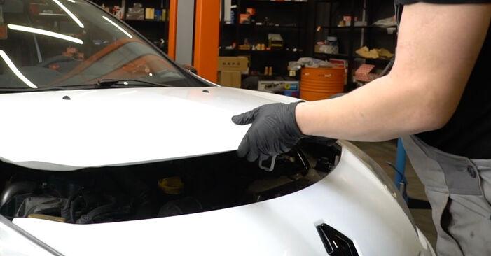 Bremsscheiben am RENAULT Clio III Schrägheck (BR0/1, CR0/1) 1.5 dCi 2010 wechseln – Laden Sie sich PDF-Handbücher und Videoanleitungen herunter