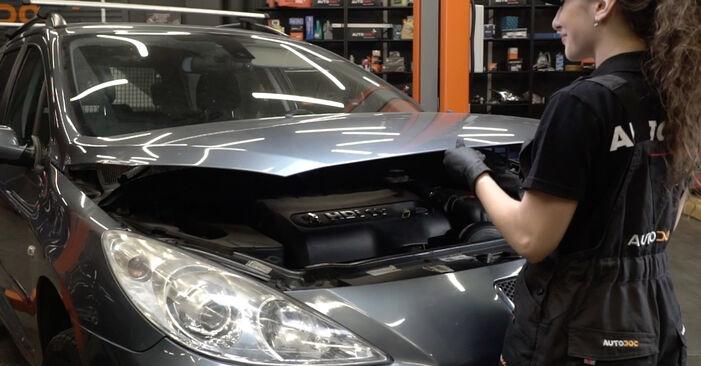 Как се сменя Филтър купе на Peugeot 307 SW 2000 - безплатни PDF и видео уроци