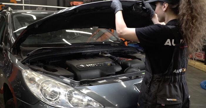 How to change Air Filter on Peugeot 307 SW 2000 - free PDF and video manuals