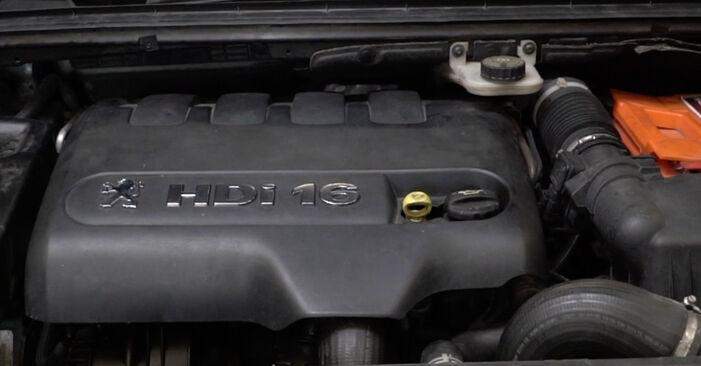 Kraftstofffilter Ihres Peugeot 307 SW 1.4 16V 2008 selbst Wechsel - Gratis Tutorial