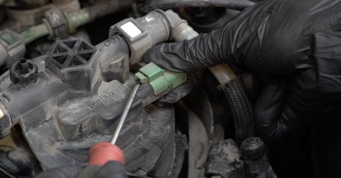 Wie PEUGEOT 307 2.0 HDi 135 2004 Kraftstofffilter ausbauen - Einfach zu verstehende Anleitungen online