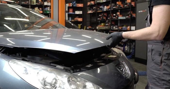 307 SW (3H) 2.0 HDi 135 2011 Courroie Trapézoïdale à Nervures manuel d'atelier pour remplacer soi-même