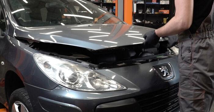 Hogyan Peugeot 307 SW 2000 Féktárcsa cseréje - ingyenes PDF és videó-útmutatók