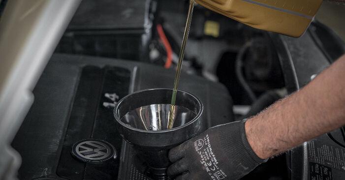 Consigli passo-passo per la sostituzione del fai da te VW Caddy 3 2005 2.0 TDI 16V Filtro Olio