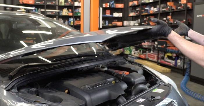 Kaip pakeisti Spyruoklės la Peugeot 307 SW 2000 - nemokamos PDF ir vaizdo pamokos