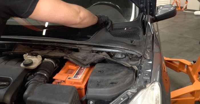 Kiek užtrunka keitimas: Peugeot 307 SW 2008 Spyruoklės - informatyvi PDF instrukcija