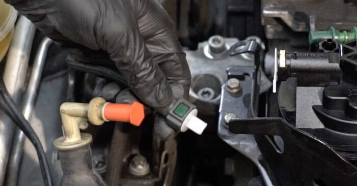 Peugeot 307 SW 1.6 16V 2002 Waterpomp + Distributieriem Set remplaceren: kosteloze garagehandleidingen