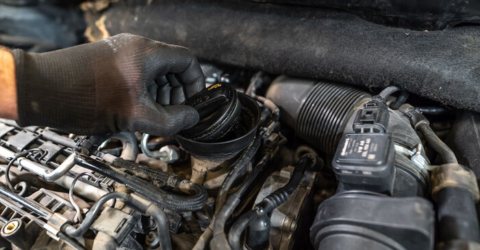 How to change Oil Filter on VW TOURAN (1T3) 2010 - tips and tricks