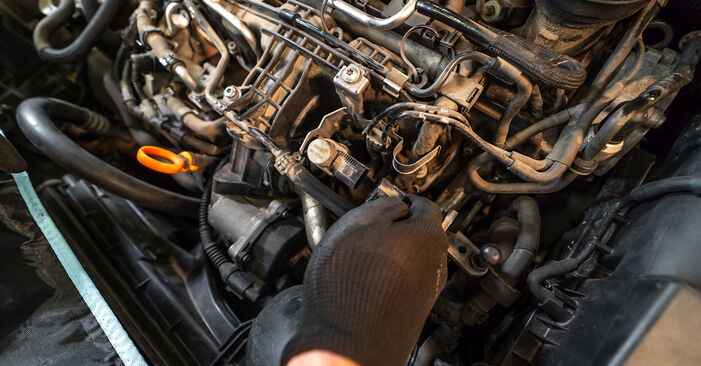 Changing Oil Filter on VW TOURAN (1T3) 1.4 TSI EcoFuel 2013 by yourself