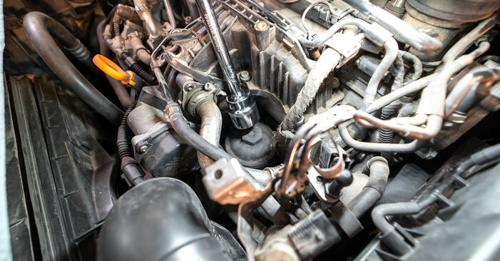 How hard is it to do yourself: Oil Filter replacement on Touran 1t3 2.0 TDI 2010 - download illustrated guide