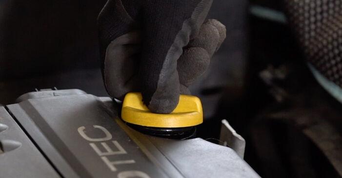 Astra G CC (T98) 1.7 DTI 16V (F08, F48) 2009 Filtro Olio manuale di officina di ricambio fai da te
