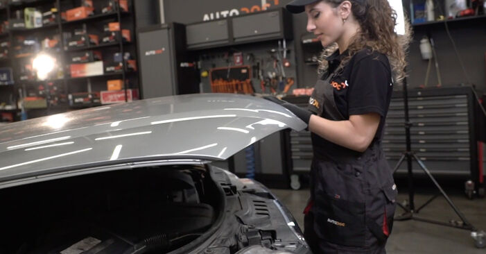 Hoe Audi A4 B7 Sedan 2004 Bougies vervangen – kosteloze pdf-handleidingen en tutorials