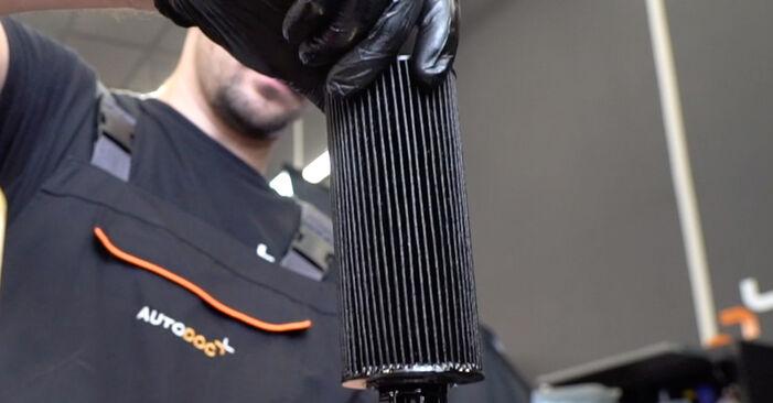 Pakāpeniski ieteikumi patstāvīgai BMW E90 2009 325i 2.5 Eļļas filtrs nomaiņai