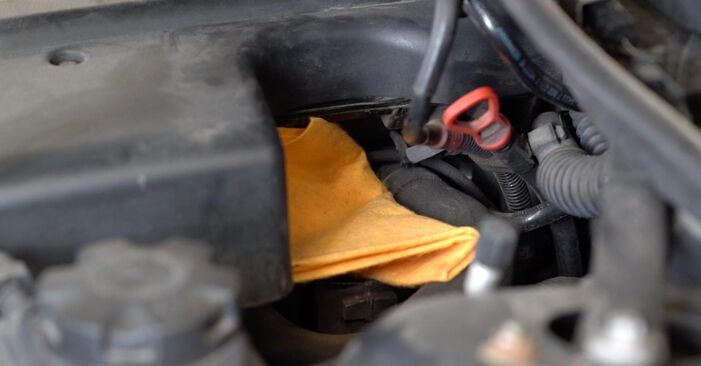 Wie man Ölfilter beim BMW 3 Limousine (E90) 2008 austauscht – Downloaden Sie sich PDF-Anleitungen und Video-Tutorials