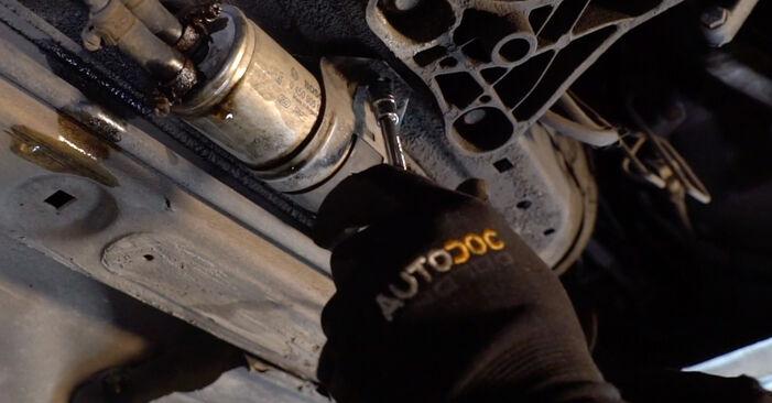 BMW 3 SERIES 2005 Degvielas filtrs pakāpeniska nomaiņas rokasgrāmata