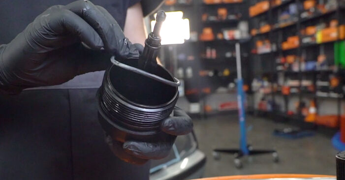 Step-by-step recommendations for DIY replacement BMW 3 Touring (E46) 2003 330d 3.0 Oil Filter