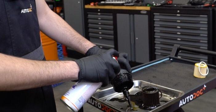 Comment remplacer SKODA Fabia I Combi (6Y5) 1.4 16V 2000 Filtre à Huile - manuels pas à pas et guides vidéo