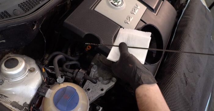 Hvordan man udskifter SKODA Fabia I Combi (6Y5) 1.4 16V 2000 Oliefilter - trin-for-trin manualer og video vejledninger