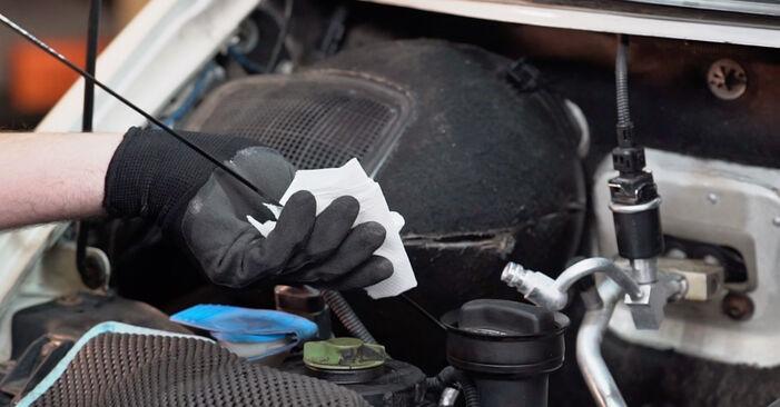 Combien de temps dure le remplacement : Filtre à Huile sur VW T4 Transporter 1998 - manuel PDF informatif