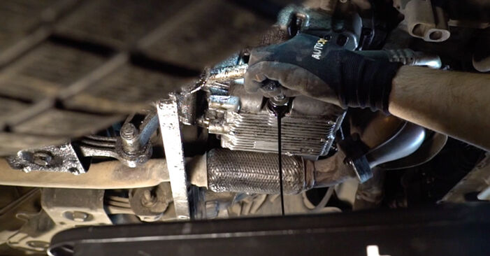 Replacing Oil Filter on FIAT BRAVO II (198) 2016 1.9 D Multijet by yourself