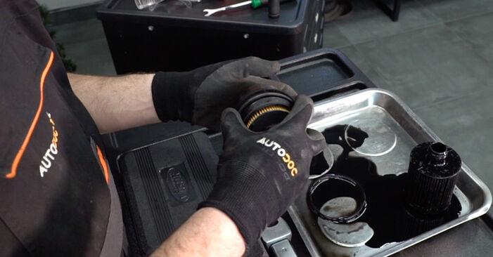 FIAT BRAVO II (198) 1.6 D Multijet 2008 Oil Filter replacement: free workshop manuals