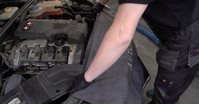 Wie Federn AUDI A4 Limousine (8EC, B7) 1.9 TDI 2005 austauschen - Schrittweise Handbücher und Videoanleitungen